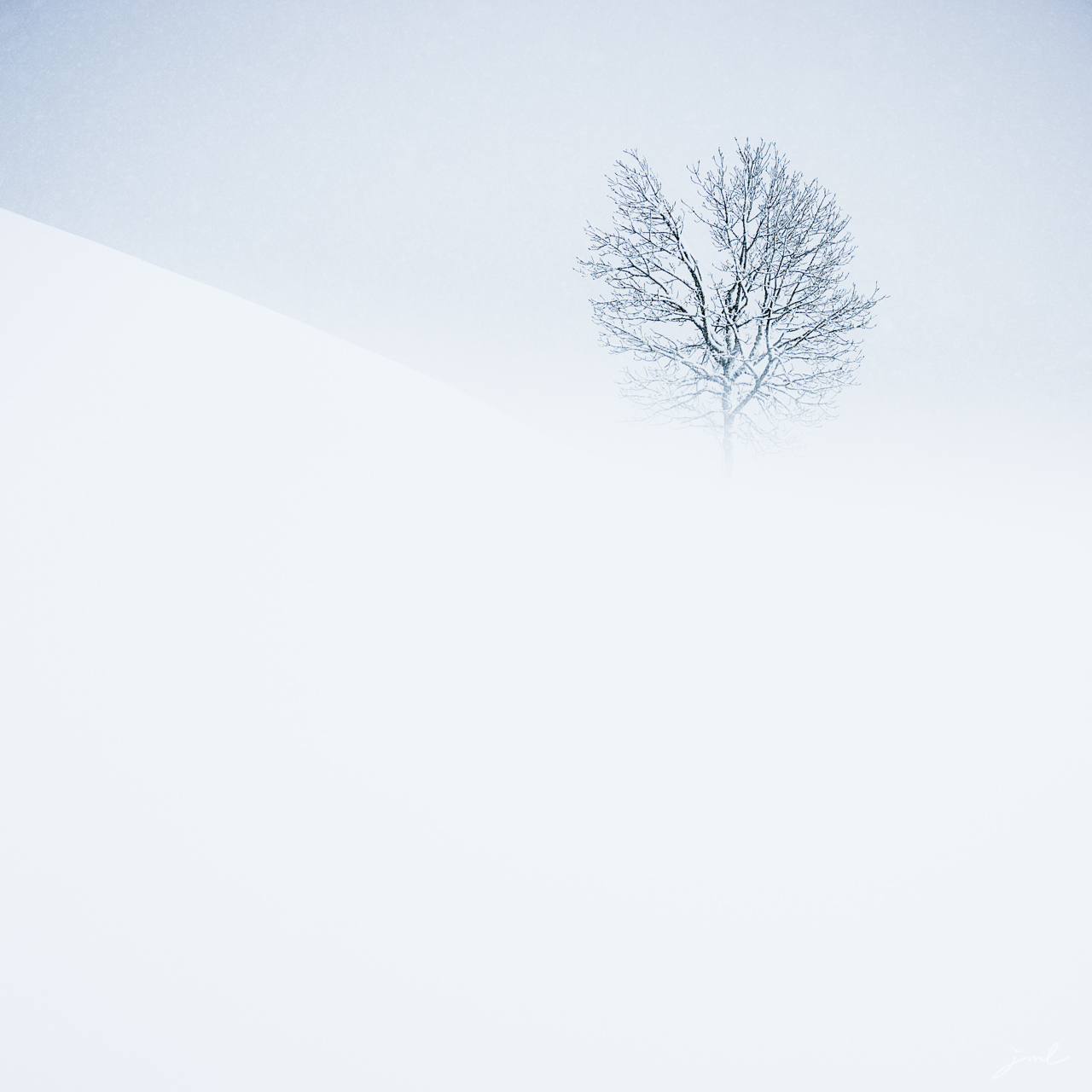 Songe hivernal